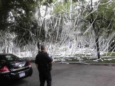 toilet-paper-prank1.jpg