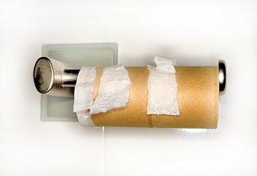 alg_toilet-paper.jpg