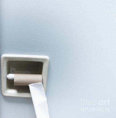 empty-roll-of-toilet-paper-marlene-ford.jpg