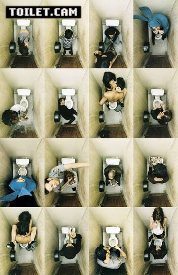 Toiletcam-3689-61x91-poster__7828233_0.jpg