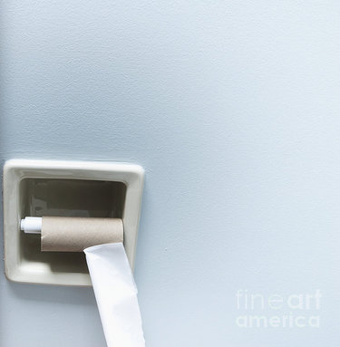 empty-roll-of-toilet-paper-marlene-ford.jpg